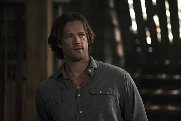 Poor Sammy - Supernatural Season 12 Episode 1