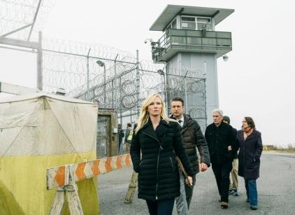 Watch Law & Order: SVU Season 17 Episode 14 Online