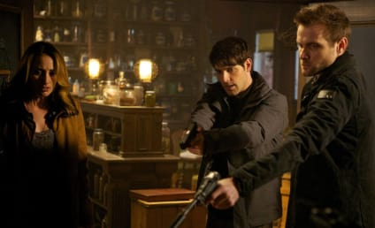 Grimm Review: Choosing Sides and Preparing for War