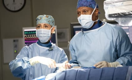 Grey's Anatomy Season 15 Episode 14 Review: I Want a New Drug