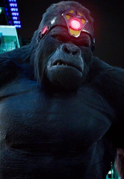Gorilla Grodd Intimidation  - The Flash Season 5 Episode 15