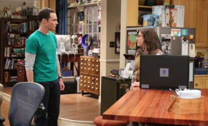 Watch The Big Bang Theory Online: Season 9 Episode 19