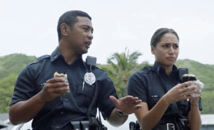 Hawaii Five-0 Season 8 Episode 18 Review: To Do One's Duty