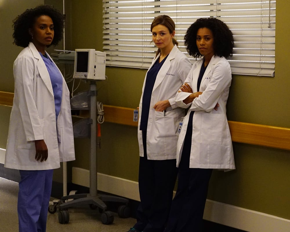 Grey S Anatomy Season 13 Episode 3 Review I Ain T No Miracle Worker Tv Fanatic