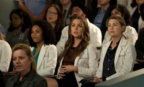 Something is Off - Grey's Anatomy Season 14 Episode 20
