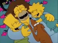 The Simpsons Season 2 Episode 2