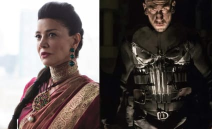 The Punisher Season 1: Shohreh Aghdashloo Boards Netflix Series