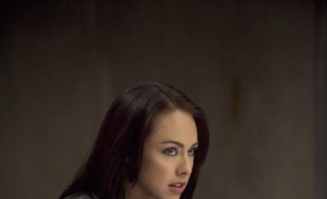 Interrogating Tessa