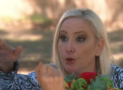 Watch The Real Housewives of Orange County Season 13 Episode 7 Online