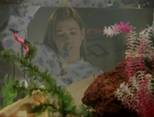 Dead Fish - Buffy the Vampire Slayer Season 2 Episode 17