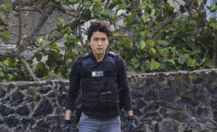 Hawaii Five-0 Season 7 Episode 19 Review: Exodus