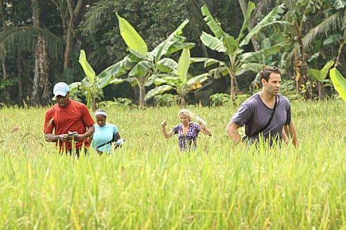 On a Indonesian Farm