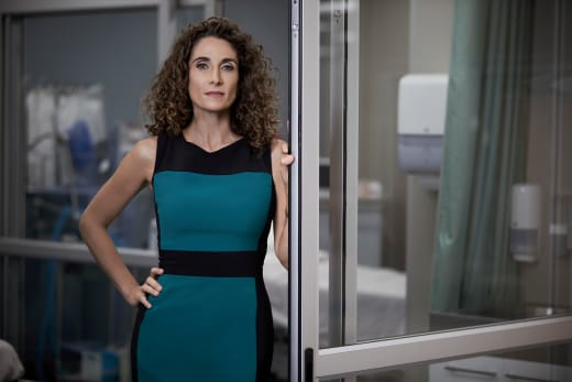 Melina Kanakaredes as Dr. Lane Hunter - The Resident