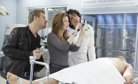 Body of Proof Pic