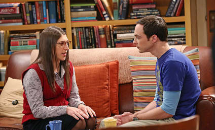 The Big Bang Theory: Watch Season 7 Episode 15 Online