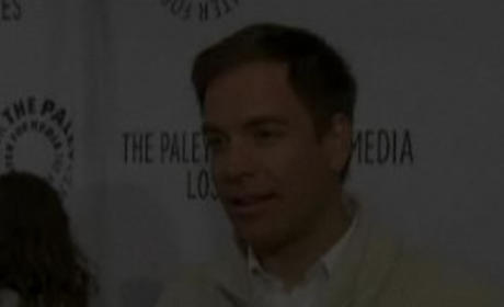 Michael Weatherly Interview