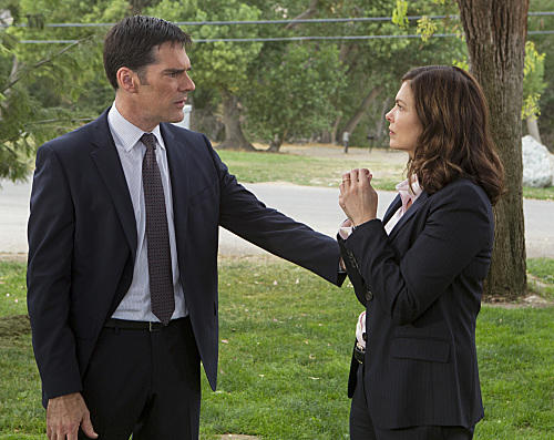 Jeanne Tripplehorn on Criminal Minds