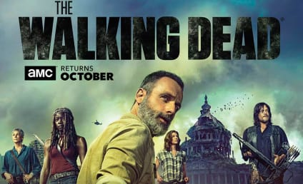 The Walking Dead Season 9 Poster: Wait... Is That Washington, DC?