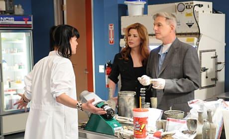 Gibbs, Borin and Abby