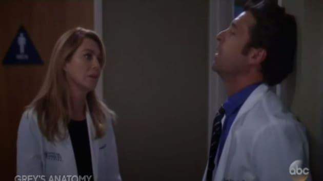 Grey S Anatomy Dog Episode