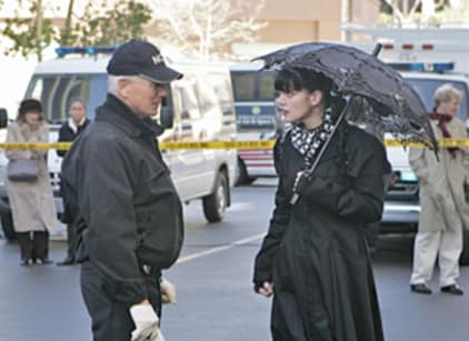 Watch NCIS Season 6 Episode 21 Online