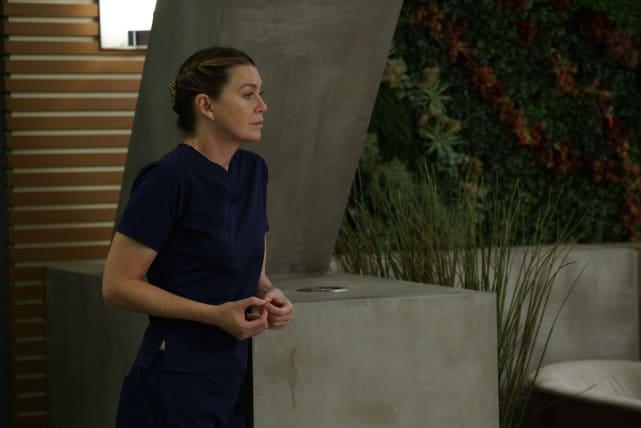 Half the Job is Waiting - Grey's Anatomy Season 14 Episode 9