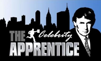 New Cast of Celebrity Apprentice: Announced!