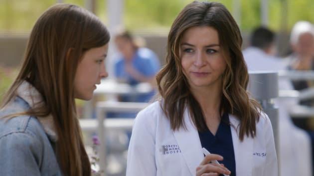 Amelia the Sponsor - Grey's Anatomy Season 14 Episode 21