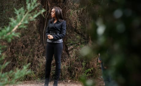 Scandal Winter Premiere Pictures: Do They Confirm Quinn's Death?