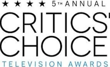 2015 Critics' Choice Television Awards: And the Nominees Are…