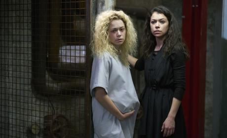 The Twins — Orphan Black Season 5 Episode 10