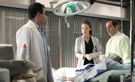 Kutner, Taub and Thirteen