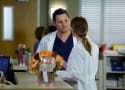 Watch Grey's Anatomy Online: Season 13 Episode 15