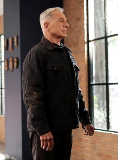 Saving Canines - NCIS Season 18 Episode 10