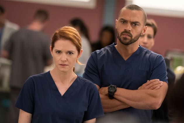 Japril on the Case - Grey's Anatomy Season 14 Episode 10