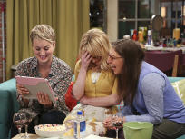 The Big Bang Theory Season 8 Episode 14