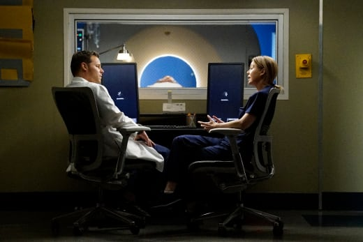 "Grey's Anatomy ""At Last"""