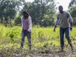 Checking the Farm - Queen Sugar