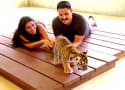 Watch Shahs of Sunset Online: Lions and Buddhists and Persians, Oh My!