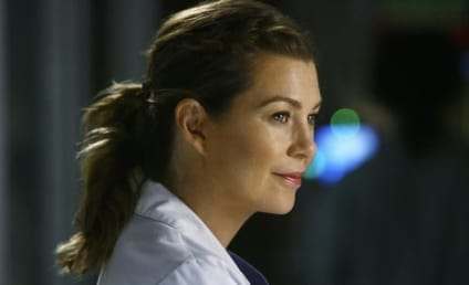 "Shonda Rhimes Opens Up On Meredith, ""Transitional"" Season Six"