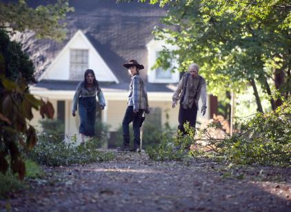 Watch The Walking Dead Season 4 Episode 9 Online