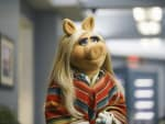 Returning From Hiatus - The Muppets