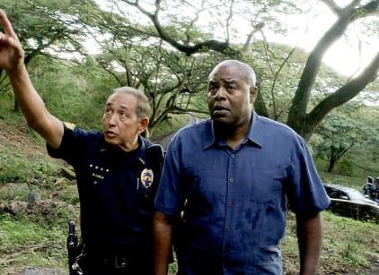 Watch Hawaii Five-0 Season 5 Episode 20 Online