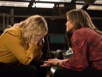 Law & Order: SVU Season 20 Episode 14