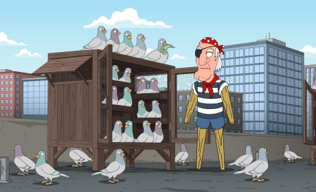 Seamus and the Pigeons - Family Guy Season 16 Episode 4