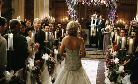 The Grey's Anatomy Wedding