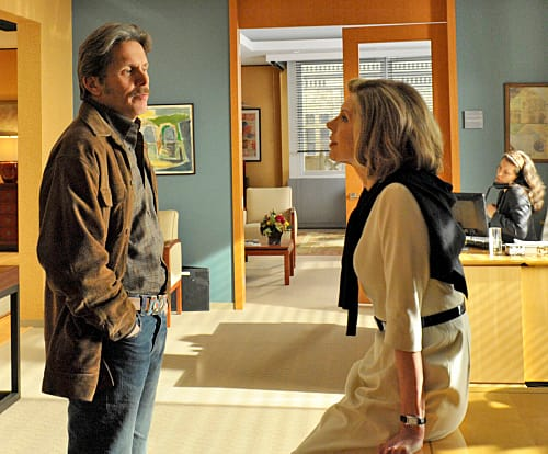 Diane Lockhart and Kurt McVeigh - The Good Wife