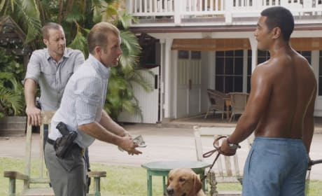 Raining Bills - Hawaii Five-0 Season 9 Episode 2