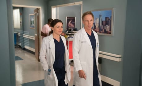 Partnering Up Again - Grey's Anatomy Season 14 Episode 18