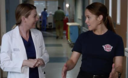 Grey's Anatomy Season 14 Episode 13 Review: You Really Got a Hold On Me